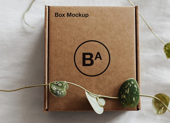 mockups packaging, packaging mockups, packaging mockup, package mockup, box mockups, paper box mockup, kraft paper box mockup, paper lunch box mockup, paper food box mockup free, paper food box mockup,